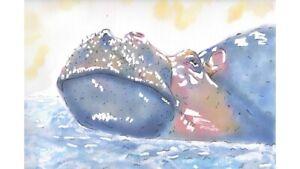 Hippo Hippopotomus Original Watercolour Print Illustration Wall Art Picture