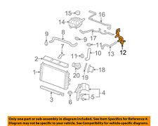 GM OEM Radiator-Heater Hose 15813532