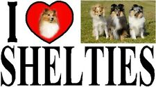 I LOVE SHELTIES Car Sticker By Starprint - Featuring the Shetland Sheepdog