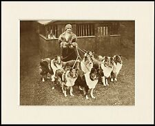 ROUGH COLLIE LADY AND HER DOGS LOVELY IMAGE DOG PRINT MOUNTED READY TO FRAME