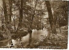 """VINTAGE POSTCARD: """"HIGHLAND WATERS, NEW FOREST"""" pub THUNDER & CLAYDEN"""" B'mout"""
