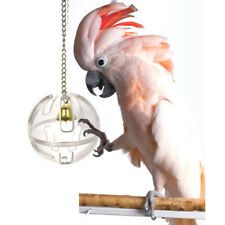 Parrots Ball Feeder Hanging Cage Feeding Birds Bell Foraging Chain For Treats Pz