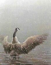 Robert BATEMAN Stretching - Canada Goose Canvas art MINT