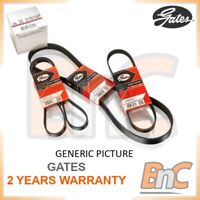 GATES V-BELT SET OEM 6216MC 048903137
