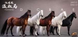 1/12 Germany Hannover Animal Model Hanoverian Horse JXK StudioJXK013
