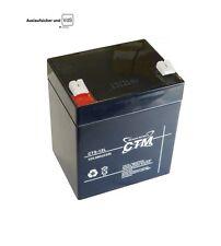 CTM CT 4,5A - 12V Gitter Vlies (Glasfaservlies) AGM Gel Akku 12Volt Power VdS