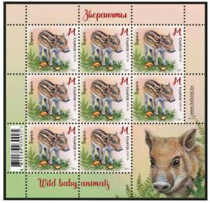 Belarus 2021 Children philately Wild baby animals 4 sheets
