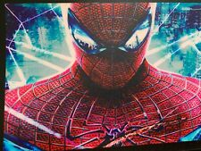 HEAVY SPIDERMAN,,   ,,,  SOUND ACTIVATED FLASHING PANEL   6