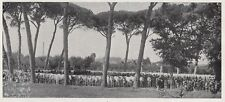 D1981 Raduno di bestiame chianino in Val di Chiana - Stampa d'epoca - 1936 print