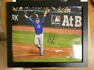 Anthony Rizzo Signed Chicago Cubs 16x20 Photo Framed Fanatics Hologram