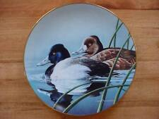 Lesser Scaup Federal Duck Stamp Plate Neal Anderson