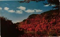 Vintage Postcard - Nature Paint Picture Near Boonville New York NY #1732
