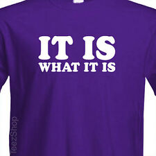 IT IS WHAT IT IS Funny tee quote cool college rude sarcastic humor party T-shirt