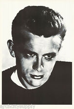 POSTER:ACTOR: JAMES DEAN - POSED - FREE SHIP #6245   RW24 C