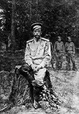 L'EX IMPERATORE Nicola II di Russia in cattività pubblicato 1917 POSTER stampati