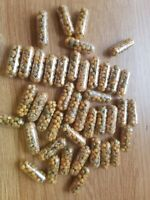 50 +10 free** 6-Month Slow Release Plant Capsules Continuous Feed Fertiliser
