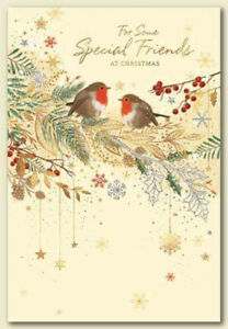 SPECIAL FRIENDS CHRISTMAS CARD ~ ROBIN DESIGN ~ QUALITY CARD & NICE VERSE