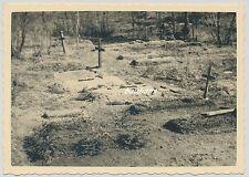 Foto Russland-Feldzug Soldatengräber 2.WK  (G221)