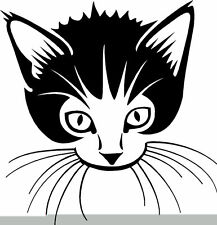 Cute Kitten Cat Face Car Window Van Bike Sticker C1