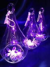 "6pcs-5"" Teardrop crystal glass candle flower holder glass terrarium | $3.95ea"