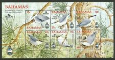 STAMPS-BAHAMAS. 2006. Bahama Nuthatch M/Sheet. SG: MS1413. Mint Never Hinged