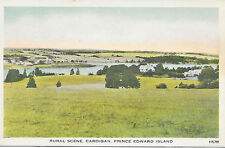 1940's Postcard Rural Scene Cardigan Prince Edward Island Canada