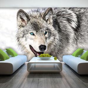 Fototapete XXL TIERE WOLF Wohnzimmer Schlafzimmer Tapete Wandtapete 74
