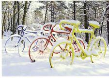 Ansichtskarte: Fahrräder in Eis und Schnee - so schlimm kann Winter sein....