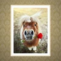 Horse Design 5D Diamond Embroidery Painting DIY Painting Cross Stitch Home Decor