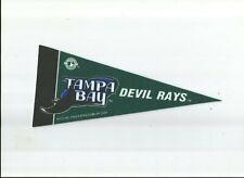 MLB Baseball Mini Pennant - Tampa Bay Devil Rays 4X9