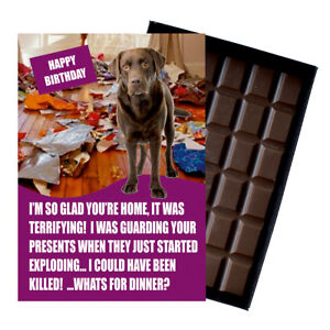 Brown Labrador Birthday Card for Dog Lover Gift Idea 100g Chocolate Bar Him Her