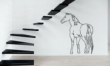 Horse Horserace Mustang Bronco Mural Wall Art Decor Vinyl Sticker z338