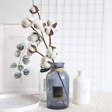 Natural Flowers Dried Cotton Plants Head Flowers Home Decoration Wedding Fake