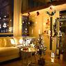 Elk LED String Light Christmas Decor Home Hanging Garland Xmas Tree Ornam Hf