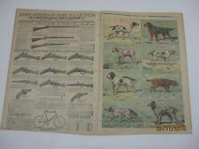 Le petit journal 1897 350 gravure type de chiens de chasse