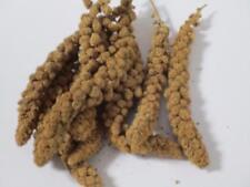 Pan panicum panorama millet sprays spray budgie seed treat BULK 1kg