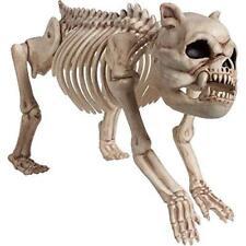 Amscan Boneyard Skeleton Dogs 22cm x 42cm