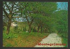 AD9276 Pesaro - Provincia - Montegrimano - Parco L. Ciacci