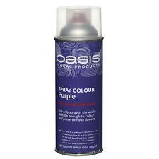 Colours Oasis Waterproof Floristry Craft Fabric Metal Glass Paint Spray Purple