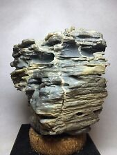 4A Natural polished Viewing stone suiseki-Gobi desert multiple layer texture