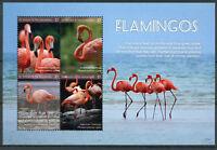 St Vincent & Grenadines 2017 MNH Flamingos 4v M/S American Flamingo Birds Stamps
