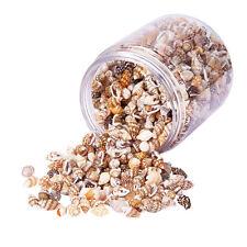Mixed Sea Shells Craft Wedding Beach Confetti Decorative Shells DIY Supplies