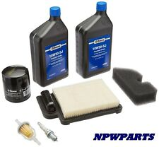 TROY BILT COLT 42  Maintenance Tune Up Kit Kohler 20 789 01-S / SV470-SV620