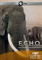 Echo: An Elephant to Remember [New DVD]