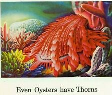 1944 Ad ~ Travelers Insurance Co.~ Thorny Oyster ~ a Spiny Coral-colored Mollusk