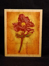 Rubber Stamp Anemone Fresco SN10291 Flower Paper Inspirations 2005 Never Used