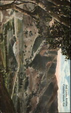 Catalina Island CA Golf Links Avalon c1910 Postcard myn