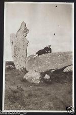 Erdeven .Bretagne . Morbihan .  photo ancienne du 14/09/1918