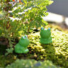 Frog Fairy Dollhouse Decoration Garden Ornament Miniature Figurine Craft Plant