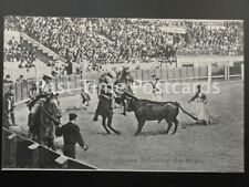 Old PC - BULL FIGHTER / PICADOR: Picador Defending The Horse